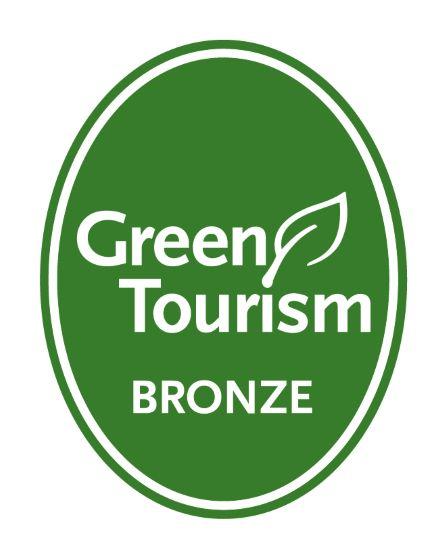 GT generic bronze